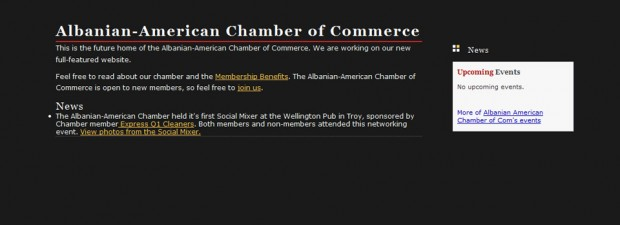 portfolio screenshot for albanian chamber of commerce website design