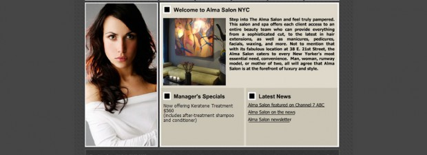 alma salon in Manhattan, NY website design portfolio screenshot