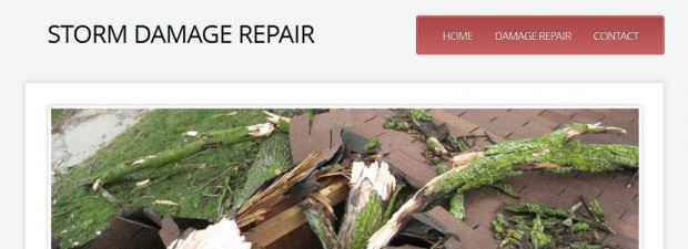 screenshot for storm damage repair website in troy