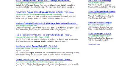 ice damage repair detroit SERP results by SEO compan