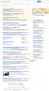 modl cleanup detroit SERP results by SEO compan