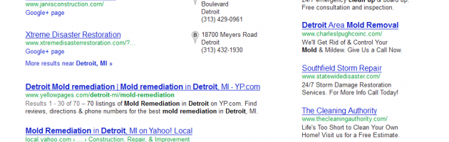 mold cleanup detroit SERP results by SEO company