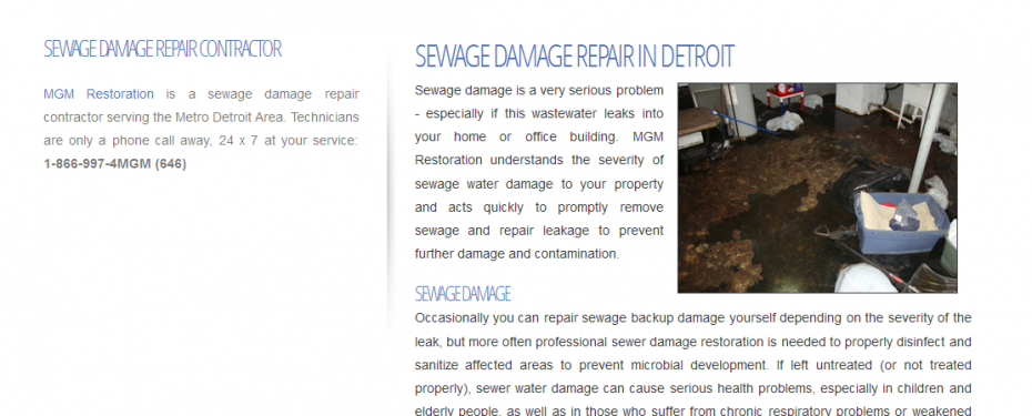 Screenshot for website design of sewagedamagedetroit.com in Metro Detroit